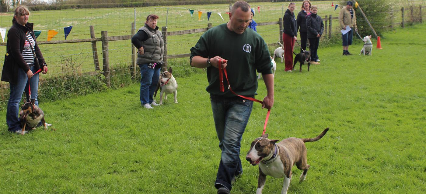 Keynsham Dogs Home